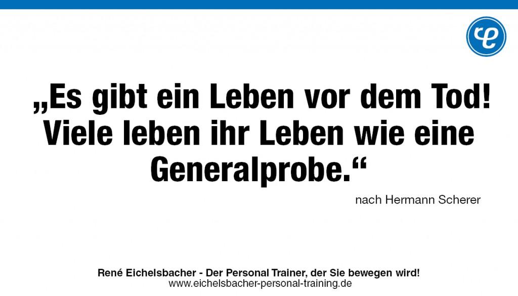 hermann-scherer